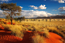 Namibia and Botswana Adventure: 22 May - 13 June