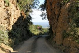 Day 6: Hogsback to Patensie