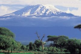 Moshi - Coffee and Kilimanjaro