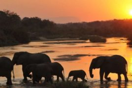 Kruger Park to Cape Town Charity Ride